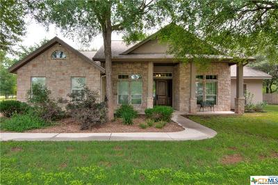 Seguin Single Family Home For Sale: 1369 Hunters Place