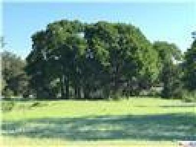 Kempner Residential Lots & Land For Sale: Tract 2 E Fm 580
