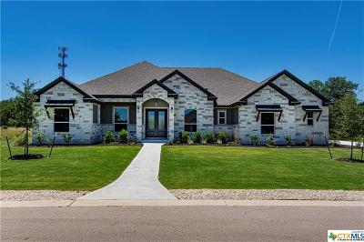 Georgetown Single Family Home For Sale: 10900 Vista Heights Drive