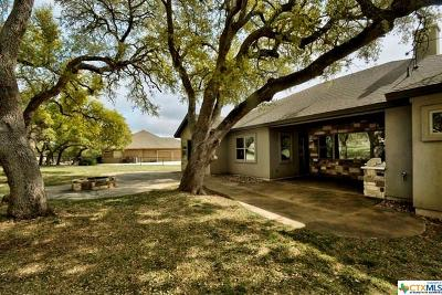 New Braunfels Single Family Home For Sale: 620 Haven Point Loop