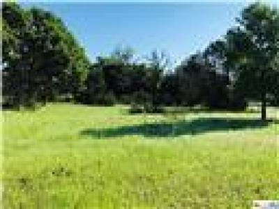 Kempner Residential Lots & Land For Sale: Tract 1 E Fm 580