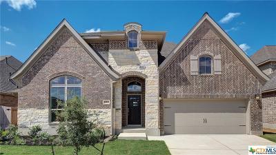San Antonio Single Family Home For Sale: 14215 Shetland Way