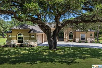 Georgetown Single Family Home For Sale: 10721 Vista Heights Drive
