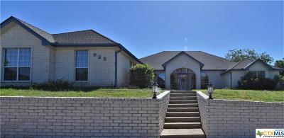 Bell County Single Family Home For Sale: 925 Rattlesnake Road