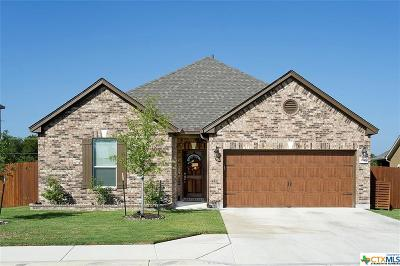 Georgetown Single Family Home For Sale: 30417 E Owl Creek Drive
