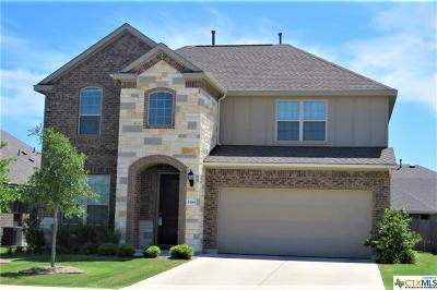 Round Rock Single Family Home For Sale: 5799 Corsica Loop