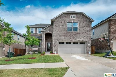 Georgetown Single Family Home For Sale: 429 Sheepshank Drive