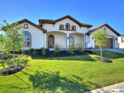 San Marcos Single Family Home For Sale: 109 Dreaming Plum Lane