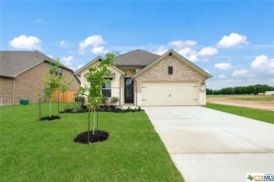 Schertz Single Family Home For Sale: 2033 Market Trail