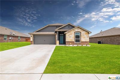 Killeen TX Single Family Home For Sale: $172,900