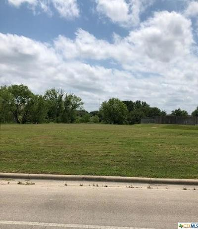 Lampasas Commercial For Sale: 1712 Central Texas Expressway