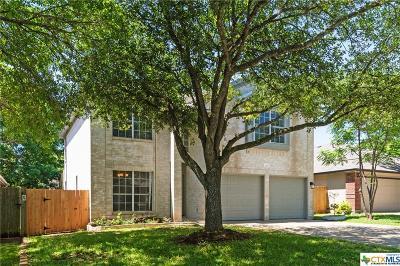Austin Single Family Home For Sale: 733 Minturn Lane