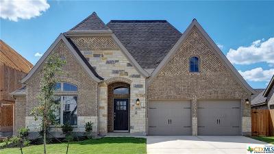 San Antonio Single Family Home For Sale: 14190 Shetland Way