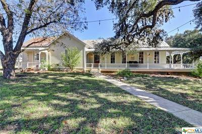 Comal County Single Family Home For Sale: 30198 Blanco Road