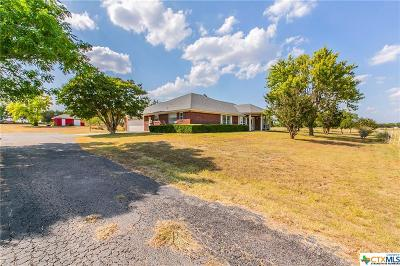 Belton Single Family Home For Sale: 4098 Shanklin Lane