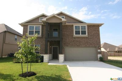 Schertz Single Family Home For Sale: 4683 Grey Sotol Way