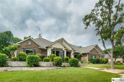 Belton Single Family Home For Sale: 421 Eagle Landing Drive