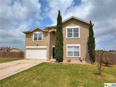 Kyle Single Family Home For Sale: 166 Sheran Cove