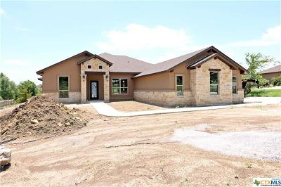 Salado Single Family Home For Sale: 1004 Park View Drive