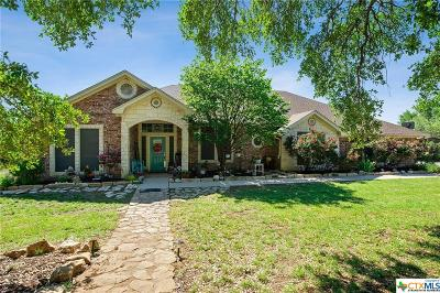 Kempner  Single Family Home For Sale: 503 County Road 3351