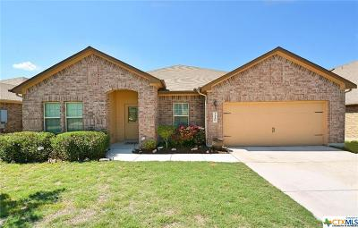 New Braunfels Single Family Home For Sale: 3140 Birch Bend