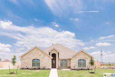 Salado Single Family Home For Sale: 4207 Big Brooke Drive