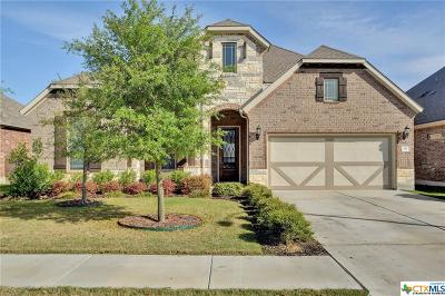 Leander Single Family Home For Sale: 917 Hartman Drive