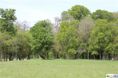 Salado Residential Lots & Land For Sale: 181 O W Lowery Drive