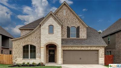 San Antonio Single Family Home For Sale: 116 Ricadonna