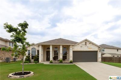 Temple Single Family Home For Sale: 8610 Open Prairie Drive