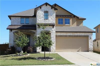 Leander Single Family Home For Sale: 2340 Lyla Lane