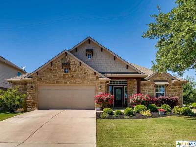 Georgetown Single Family Home For Sale: 167 San Miniato Street