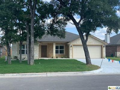 Belton Single Family Home For Sale: 525 Damascus Drive