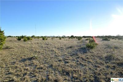 Bell County, Burnet County, Coryell County, Lampasas County, Mills County, Williamson County, San Saba County, Llano County Residential Lots & Land For Sale: N Us Hwy 183