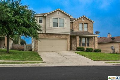 San Marcos Single Family Home For Sale: 208 Calixto Court