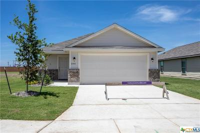 Seguin Single Family Home For Sale: 2404 Ranger Pass
