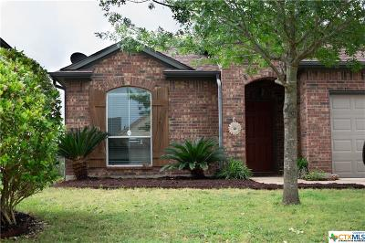 San Marcos Single Family Home For Sale: 122 Fence Line Drive