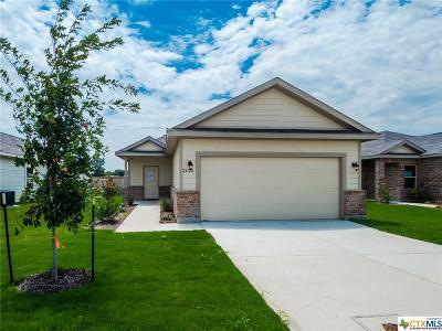 Seguin Single Family Home For Sale: 2420 Ranger Pass
