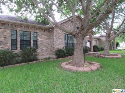 Seguin Single Family Home For Sale: 673 Royal Sage Drive