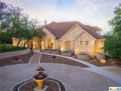 New Braunfels Single Family Home For Sale: 213 Shady Hollow