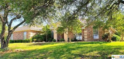 Coryell County Single Family Home For Sale: 102 Circle Vista