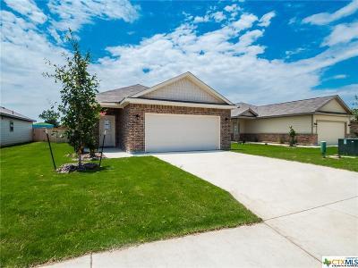 Seguin Single Family Home For Sale: 2416 Ranger Pass