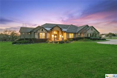 New Braunfels Single Family Home For Sale: 1307 Vintage Way