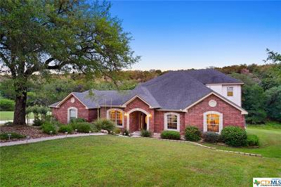 San Marcos Single Family Home For Sale: 2523 Mountain High Drive
