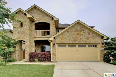 Georgetown Single Family Home For Sale: 5143 Scenic Lake Drive