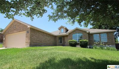 Single Family Home For Sale: 5809 Siltstone Loop