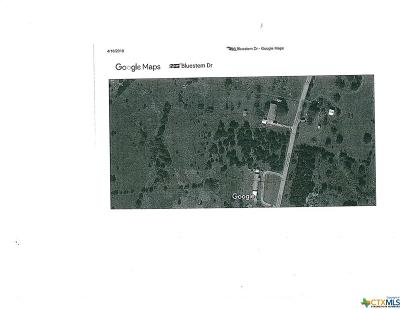Copperas Cove Residential Lots & Land For Sale: 1.34 Acres Bluestem Drive
