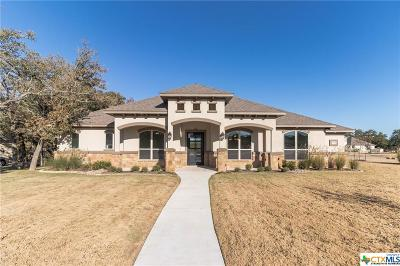 Georgetown Single Family Home For Sale: 100 San Juan