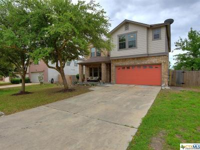 Kyle Single Family Home For Sale: 701 Abundance Lane