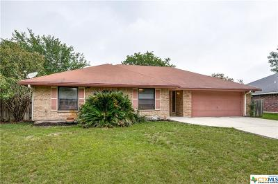 New Braunfels Single Family Home For Sale: 720 Belmont Drive